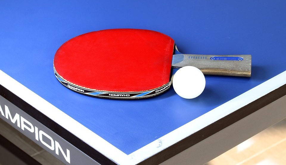 Magnificent Guide Reviews Best Ping Pong Paddles For The Money 2019 Home Interior And Landscaping Spoatsignezvosmurscom